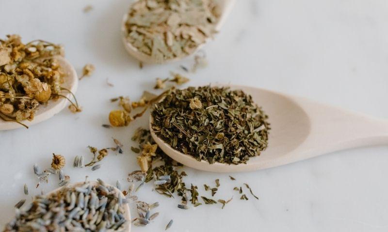 Deiters-plantas-medicinales2